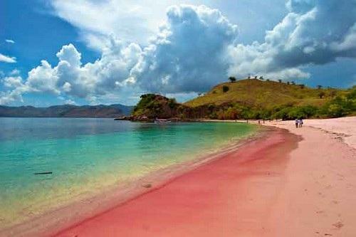 Bãi biển màu hồng Komodo – Indonesia: Komodo là một trong số khoảng 17.508 đảo của Indonesia. Đảo này có diện tích khoảng 390 km² và trên 2.000 người sinh sống. Đặc biệt nơi đây, có những bãi biển dài với màu ửng hồng độc đáo nhất trên thế giới.