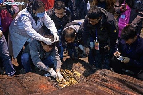 Tuần vừa qua, công tác khai quật ngôi mộ Xương Ấp Vương Lưu Hạ, cháu trai Hán Vũ Đế ở Nam Xương, nằm ở phía đông tỉnh Giang Tây (Trung Quốc) đã bước vào giai đoạn quan trọng: khai quật gian chính đặt quan tài.