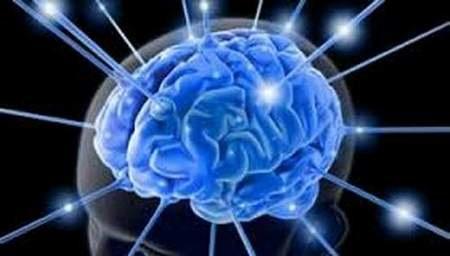 Não sáng lên khi cảm giác cực khoái đạt đỉnh