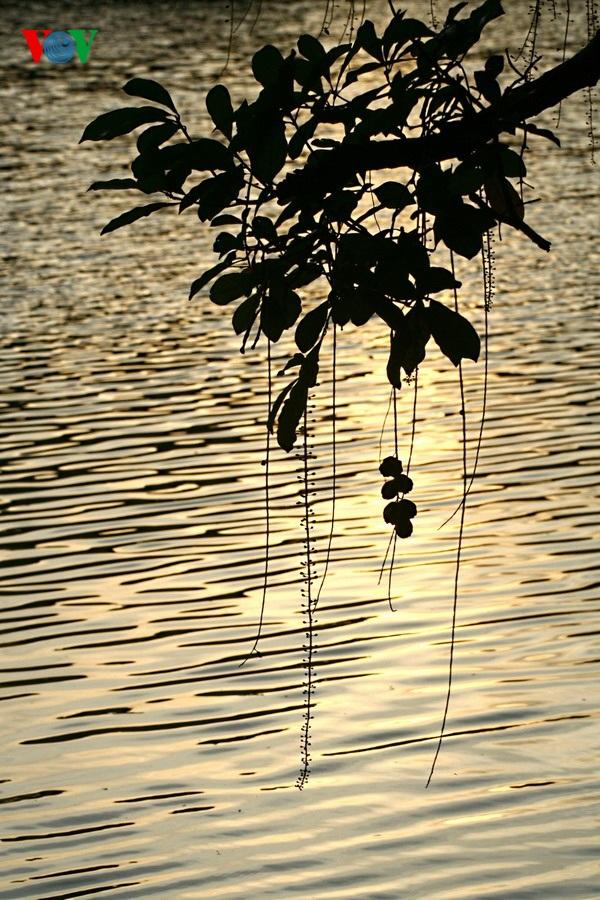 Hồ Gươm quyến rũ khi vào thu - 13