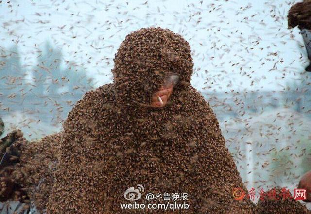 Người đàn ông Trung Quốc đã lập kỷ lụcthế giới về chiếc áo bằng ong nặng nhất(109 kg). Để lập được kỳ tích này, ông phải chịu 2.000 vết ong đốt.