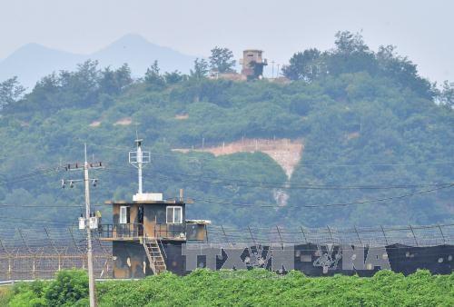 Hai miền Triều Tiên tìm kiếm sự ủng hộ quốc tế - 2