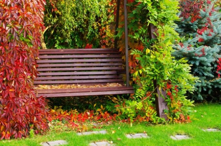 """7 """"bí quyết"""" để thiết kế khu vườn nhỏ tuyệt đẹp - 3"""