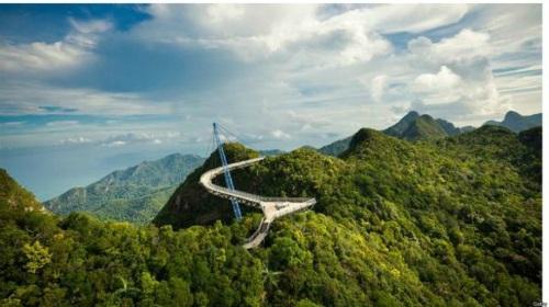 """Ngắm cây cầu như """"tuyệt tác nghệ thuật giữa thiên nhiên"""" - 3"""