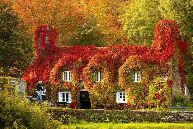 Đừng lỡ hẹn với mùa thu thiên đường Anh quốc - 5