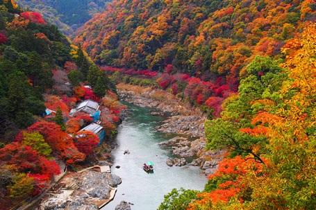 Lãng mạn sắc thu Đông Bắc Á - 2