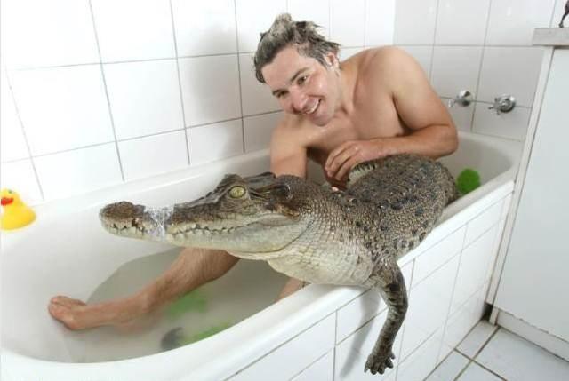 """""""Thót tim"""" cảnh chàng trai tắm """"tay ba"""" với cá sấu và trăn khổng lồ - 5"""