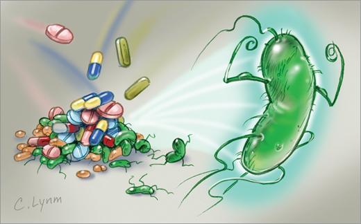 Sử dụng kháng sinh đúng cách - 1