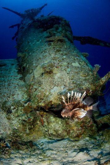 Cận cảnh nghĩa địa máy bay dưới đáy Thái Bình Dương - 12