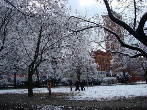 Đón tuyết đầu mùa ở trời Âu - 10