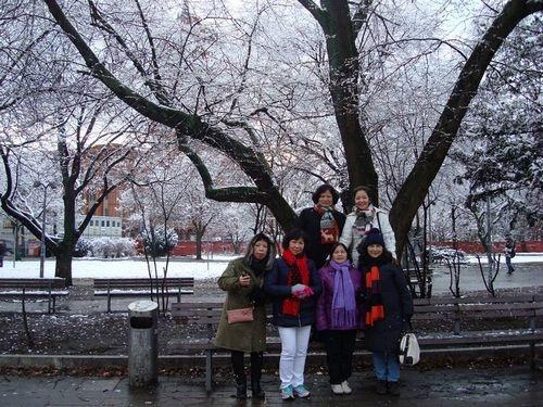 Lạnh cóng nhưng rất thú vị, nhất là với những người Việt lần đầu được chạm tay vào tuyết