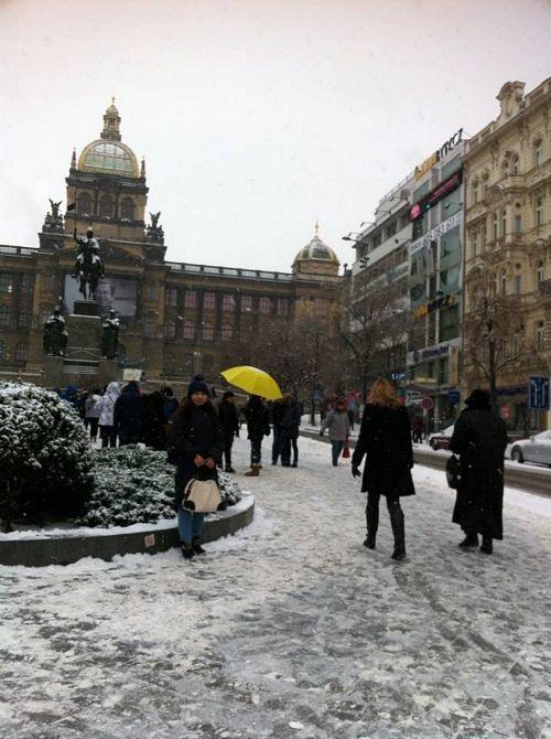Tuyết rơi dày khiến quảng trường Vaclav Havel (gọi nôm na là quảng trường Con Ngựa vì có tượng người cưỡi ngựa) ở trung tâm Praha đóng băng trơn trượt.