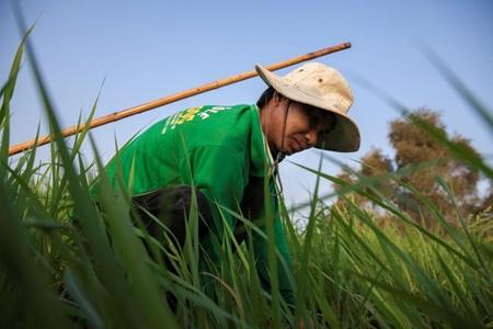 Gia đình anh Nguyễn Văn Trí và 50 hộ dân khác đã được dự án hỗ trợ ngư cụ, xuồng để tham gia khai thác thủy sản trong Vườn