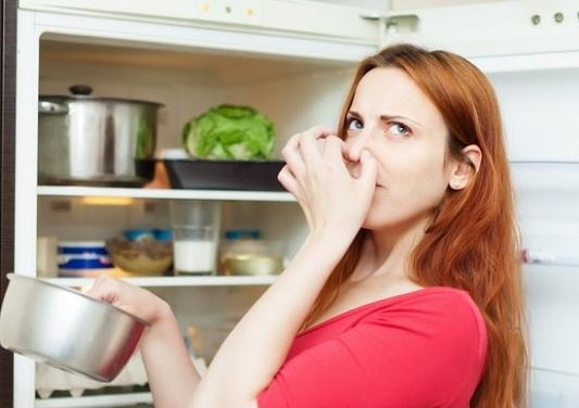 Thường xuyên khử mùi hôi trong tủ lạnh để đảm bảo an toàn cho thực phẩm bên trong (Ảnh: Internet)