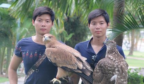 Hai chú đại bàng có giá hàng trăm triệu của anh em Việt Anh - Nhật Anh (TP Hồ CHí Minh).