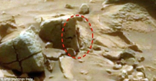 Sinh vật bí ẩn được cho là đứng cạnh một tảng đá trên sao Hỏa.