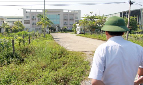 Lãnh đạo huyện Tam Nông, Phú Thọ xót xa trước khối tàn sản nghìn tỷ bỏ không. Ảnh: Minh Đức