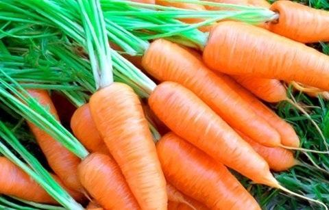 Sai lầm cần tuyệt đối tránh khi ăn cà rốt - 1