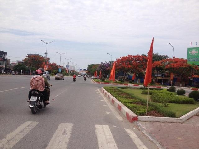 Ngắm vẻ đẹp nao lòng của đường hoa phượng dài nhất Việt Nam - 11