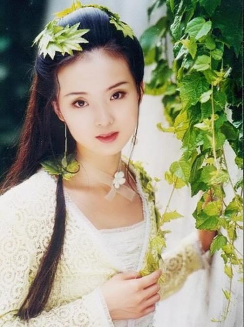 Vương Diễm kết hôn với Vương Chí Tài, một đại gia bất động sản nổi tiếng giàu có ở Trung Quốc. Là vợ của một trong những doanh nhân giàu có nhất Trung Quốc, Vương Diễm sống trong nhung lụa. Cô sở hữu những chiếc xe hơi đắt giá, tủ quần áo đầy những bộ trang phục và túi xách đắt tiền, luôn có người theo bước hộ tống.