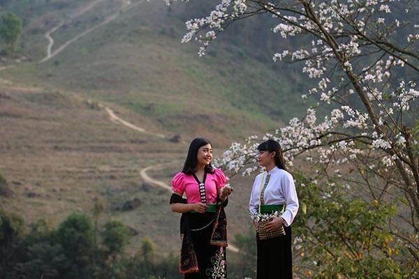 Thiếu nữ Thái e ấp bên hoa ban rừng tháng 3 - 4
