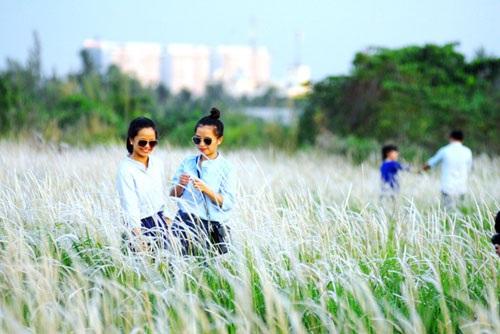 Cánh đồng cỏ lau đẹp như tranh giữa Sài Gòn - 7
