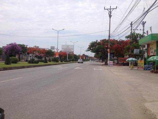 Ngắm vẻ đẹp nao lòng của đường hoa phượng dài nhất Việt Nam - 16