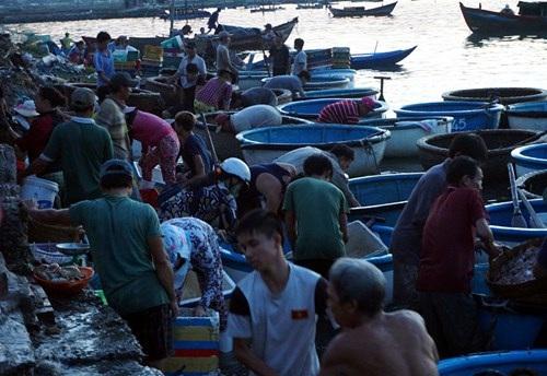 Bến cạn, tàu không cập được, phần lớn các loại hải sản được chuyển xuống thuyền thúng để đưa vào chợ