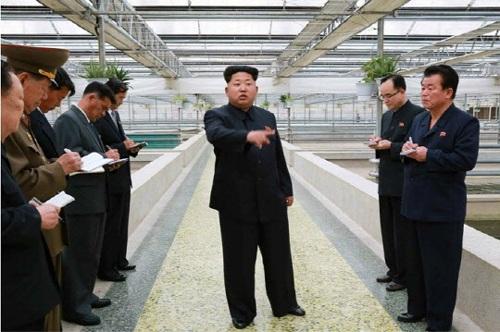 Nhà lãnh đạo Triều Tiên trong một chuyến thị sát (Ảnh: Chosun)