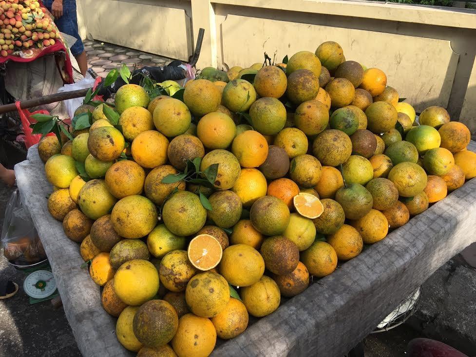 Nhưng tại Hà Nội hiện nay, cam Cao Phong vẫn được bày bán tràn lan với giá rẻ chỉ từ 25.000-30.000 đồng/kg
