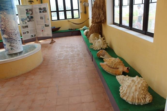 """""""Cẩm nang"""" du lịch khám phá Cù Lao Chàm - 2"""