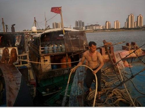 Cuộc chiến ngầm của ngư dân Trung Quốc ở Biển Đông - 2