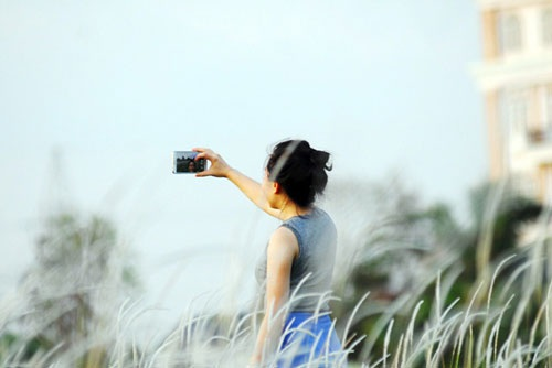 Cánh đồng cỏ lau đẹp như tranh giữa Sài Gòn - 10