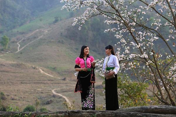 Thiếu nữ Thái e ấp bên hoa ban rừng tháng 3 - 1