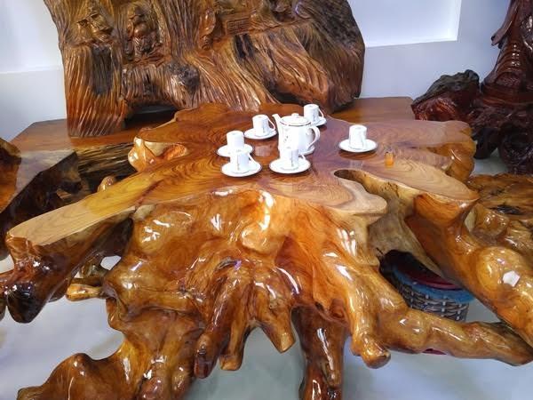 Chiếc bàn được làm từ gốc cây huỳnh đàn có đường kính lên tới 1,6m