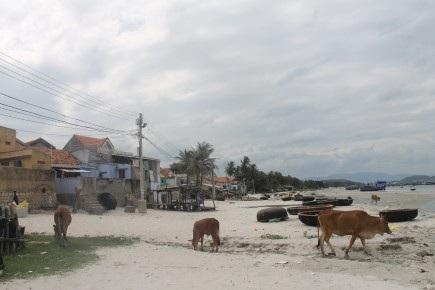 Một góc làng chài Bá Hà 1, nơi có nhiều người mưu sinh bằng nghề thợ lặn. Ảnh: N.BĂNG