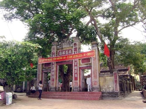 """""""Cẩm nang"""" du lịch khám phá Cù Lao Chàm - 3"""