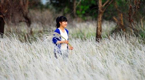 Cánh đồng cỏ lau đẹp như tranh giữa Sài Gòn - 13