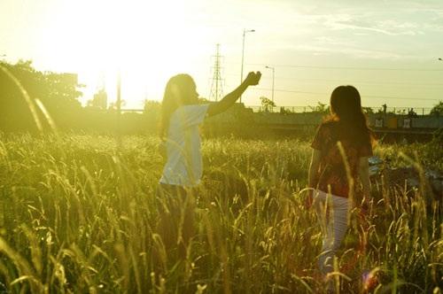 Cánh đồng cỏ lau đẹp như tranh giữa Sài Gòn - 15