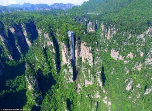 Từ trên đỉnh thang máy cao 362, du khách có thể chiêm ngưỡng toàn cảnh những cột đá khổng lồ giữa bạt ngàn cây xanh trong vườn quốc gia Trương Gia Giới.