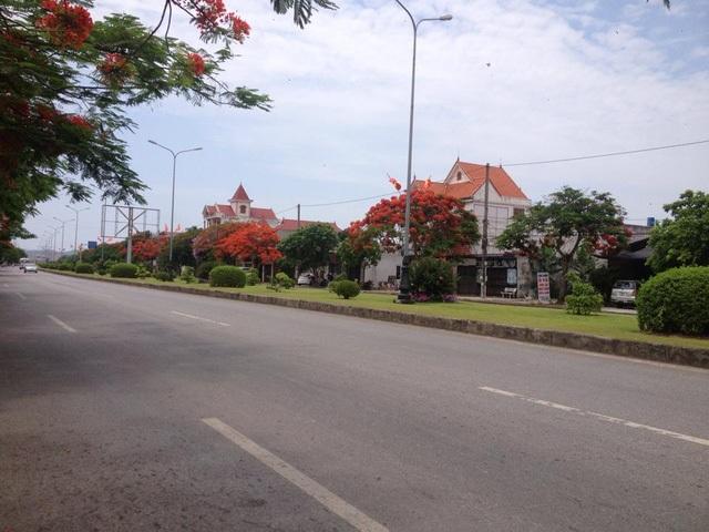 Ngắm vẻ đẹp nao lòng của đường hoa phượng dài nhất Việt Nam - 4