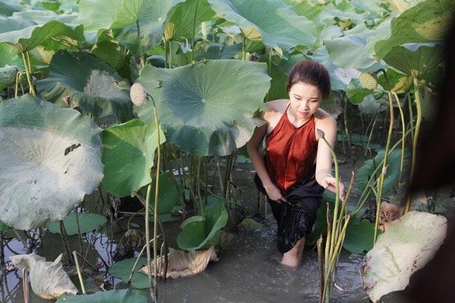 """Thiếu nữ Hà thành """"lăn lê bò toài"""" chụp ảnh cùng sen - 5"""