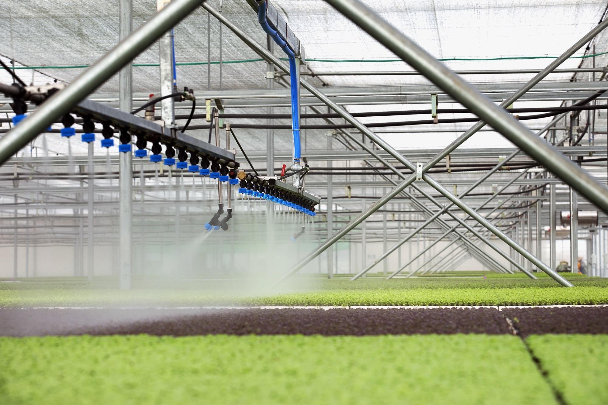 """Công nghệ rau mầm microgreen được thiết kế theo dây chuyền tự động khép kín, cho phép sản phẩm """"siêu sạch"""", được xem như nguồn rau thực phẩm chức năng cho sức khoẻ"""