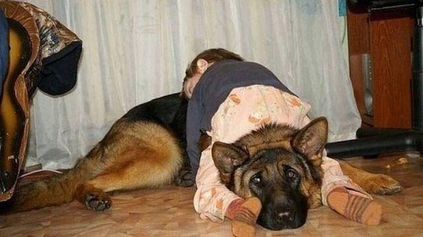 Chỗ ngủ đặc biệt yêu thích của mình