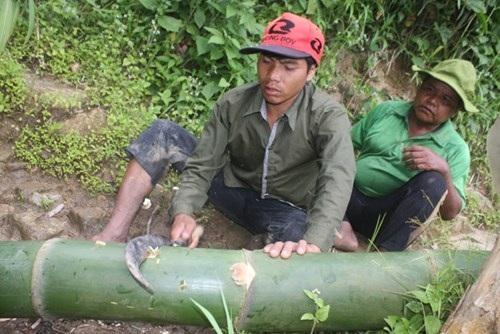 """Từ những thân tre """"khủng"""", dân làng chế tác thành các công cụ sử dụng trong sinh hoạt hàng ngày. Ngoài dùng để làm nhà, loại tre khủng này còn được dùng để làm ống đựng nước, dẫn nước về làng, làm gối nằm ngủ, làm bát ăn cơm, làm mũi tên, làm mõ…."""