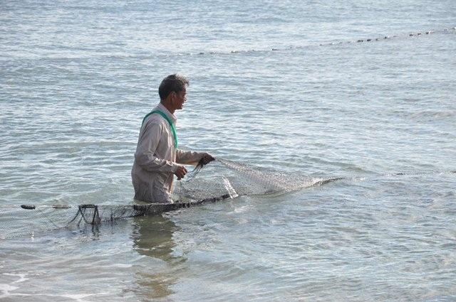 Túi lưới chứa cá được kéo đưa lên bờ.
