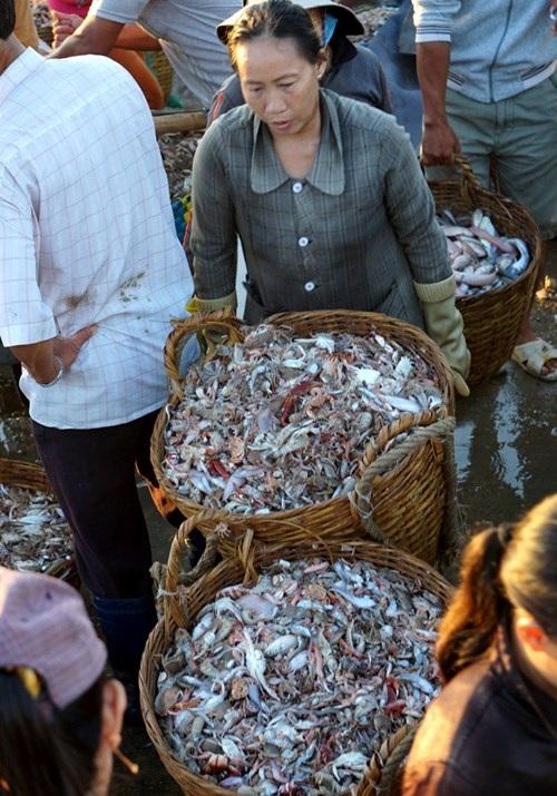 Một phụ nữ tất bật dùng xe tay chở hai sọt cá, nặng khoảng 1 tạ