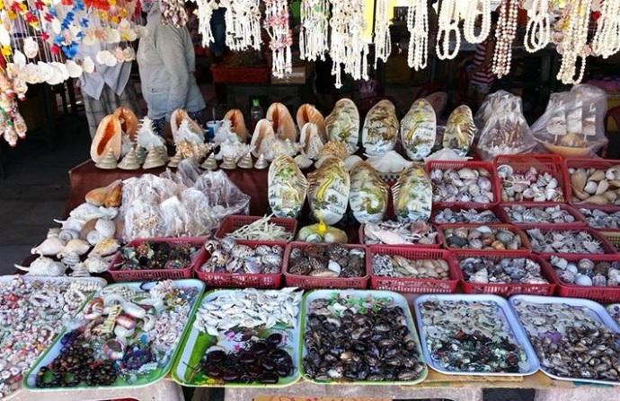 """""""Cẩm nang"""" du lịch khám phá Cù Lao Chàm - 6"""