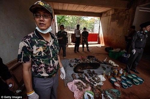Phát hiện này theo sau hàng loạt cáo buộc buôn bán ngược đã động vật hoang dã của ngôi đền nổi tiếng