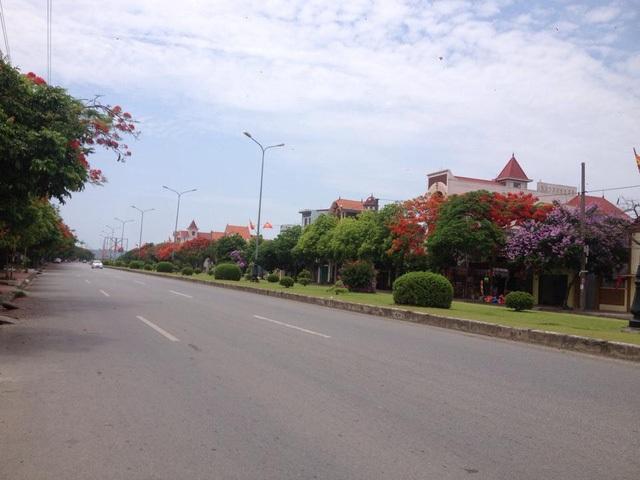 Ngắm vẻ đẹp nao lòng của đường hoa phượng dài nhất Việt Nam - 6